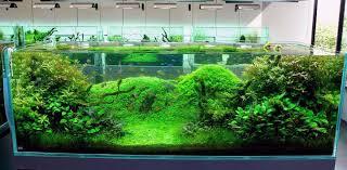 Funny Fish Tank Decorations Asian Aquarium Decorations