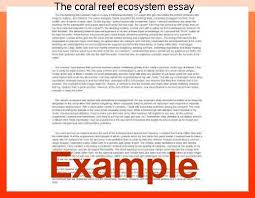life skills essay courses online