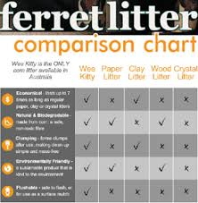 Cat Litter Comparison Chart Can Ferrets Use Cat Litter Whats The Best Litter For