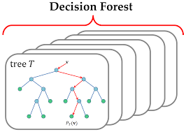Introduction To Random Forest Blog Dimensionless