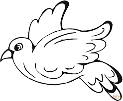 Small Picture Pigeon 7 coloring page Free Printable Coloring Pages
