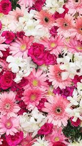 Wallpaper flower Iphone Wallpaper Iphone Wallpaper Flowers Pinterest Iphone Wallpaper Flowers Iphone Backgrounds Pinterest Sfondi