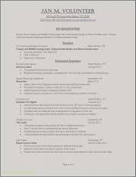 Resume Professional Summary Example Sample 28 Personal Summary
