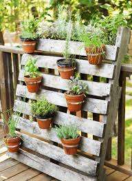 Pallet Planting Ideas