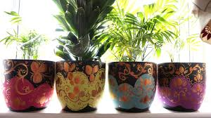 Cool Decorative Plant Pots Indoor Images Design Ideas ...