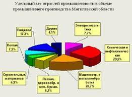 Реферат Природно ресурсный и экономический потенциал Могилевской  Природно ресурсный и экономический потенциал Могилевской области