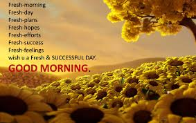 Free Download Good Morning Pictures With Quotes Best Of New Quotes Hd Good Morning With Sunflowers Free Download Nickmaraviya