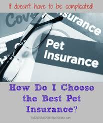Pet Insurance Comparison Chart 2015 The Easy Way To Choose The Best Pet Insurance