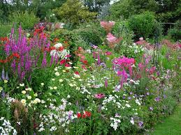 Small Picture 7 best Garden Borders images on Pinterest Flower gardening