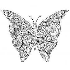 Farfalle E Insetti Disegni Da Colorare Per Adulti