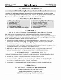 Cfo Resume Template Resume Template For Cleaning Job Awesome Hospital Cfo Resume 9