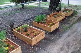 inspiring planter box ideas for your garden