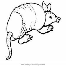 Small Picture animalesanimalesvariosarmadilloJPG Dibujos para colorear con
