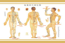 Acupuncture Wall Charts Download Buy Human Meridian Acupuncture Points Chart Large Wall Map