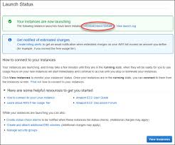 Step 2: Create an EC2 Instance and Install a Web Server - Amazon ...