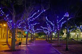 led color change lighting dazzles downtown sarasota
