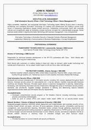 Information Technology Resume Examples Best Of Director Resume
