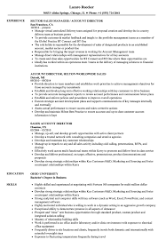 Account Director Resume Sales Account Director Resume Samples Velvet Jobs 12