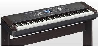 Top 3 Best Digital Piano Reviews Best Digital Piano Reviews