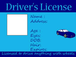 License Own Create Drivers Your