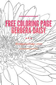 Free Coloring Page Gerbera Daisy Terrymcclary