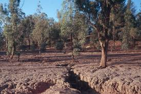Image result for land degradation