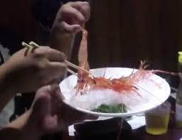 In korea, it's called sannakji — a live octopus that has been cut into small pieces or prepared but to those of western persuasion, oysters are the most common animal often eaten raw and alive. Octopus Shrimps Lobsters And Other Animals Eaten Alive