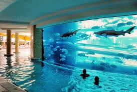 Brilliant Really Cool Swimming Pools Tank Surrounded By A Pool With Beautiful Ideas