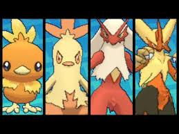 Full Torchic Evolution Team