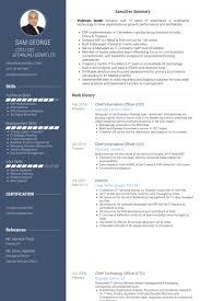 Chief Information Officer Resume Samples Visualcv Resume Samples