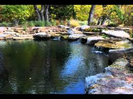 natural looking in ground pools. Natural Swimming Pools \u0026 Ponds: About Natural Looking In Ground Pools T