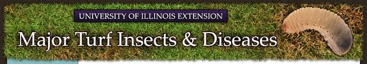 Managing Turfgrass Diseases Major Turf Insects Diseases