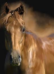 horse horses pony head chestnut horse painting