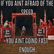 Barrel Racing Quotes Adorable Best Barrel Racing Saying And Quotes Cowgirl Times