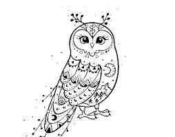 Winter Barn Owl Coloring Page Coloringcrewcom