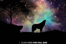 howling wolf wallpaper. Fine Wolf Howling Wolf Wallpaper With Wallpaper V