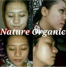 review lulur wajah nature organic