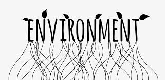 what is the importance of public awareness to protect environment environment
