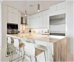 Modern Condo Kitchen Design