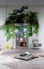 indoor gardening ideas. Suspended Indoor Gardening Ideas