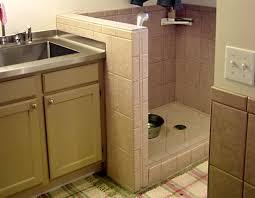 Dog Shower Traditional Basement Salt Lake City By Renovation Inspiration Bathroom Remodeling Salt Lake City Decor