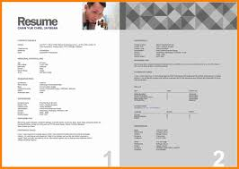 Resume Format Malaysia Free Resume Example And Writing Download