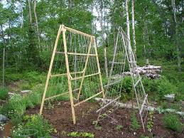 Small Picture Trellis Design for Different Need Room furniture Ideas