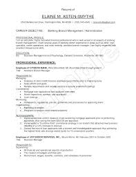 Objective For Banking Resume Example Of Resume Objective Career