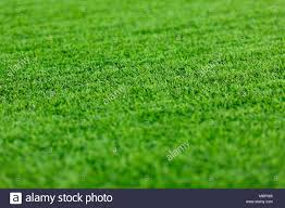 artificial turf texture. Abstract Background Of Green Artificial Turf, Textures Background, Field For Game. Close-up Turf Texture