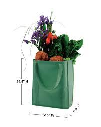 Econscious Ec8075 Nonwoven Grocery Tote