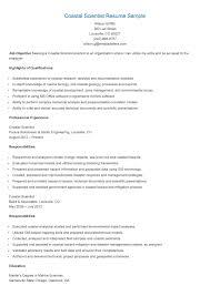 Copywriter Resume Copywriter Cv Sample 52