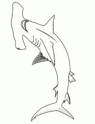 hammerhead shark clipart black and white. Simple Hammerhead Shark  To Hammerhead Clipart Black And White I