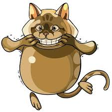 Image result for cartoon illustration of a smiling cat