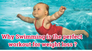 why is swimming the perfect workout for weight loss swimming to lose belly fat full body workout